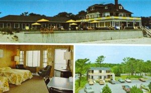 1 Rose Brier Post Card 1987
